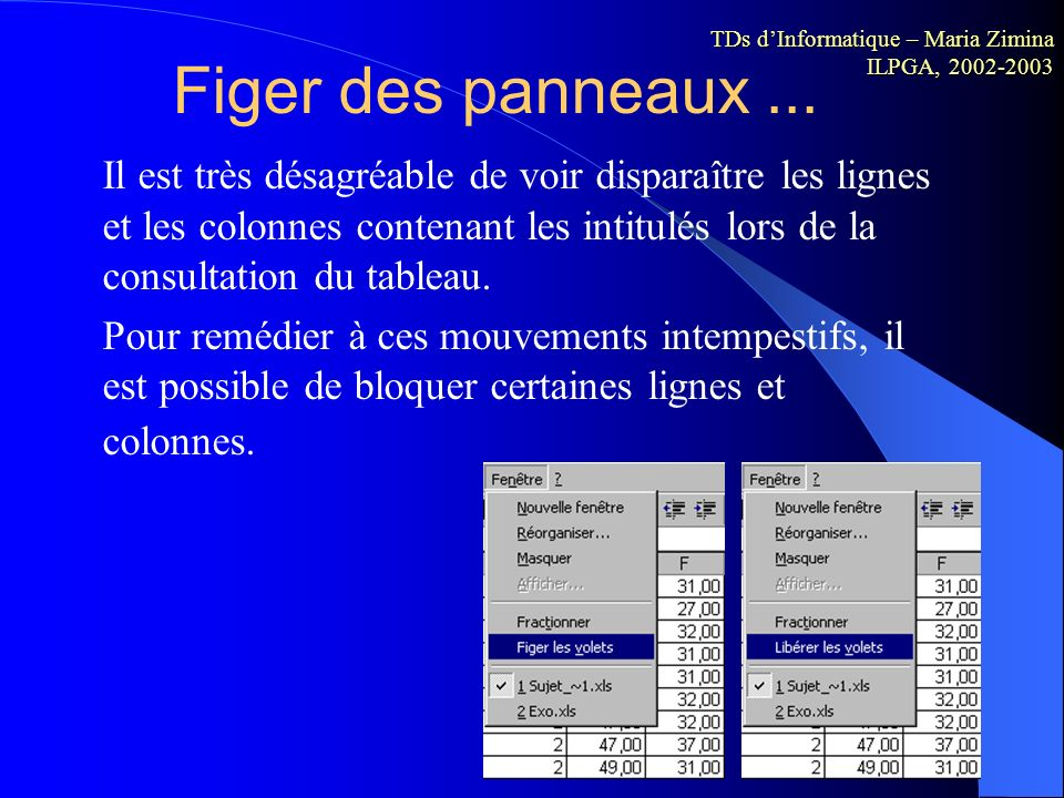 Figer des panneaux ... TDs d'Informatique – Maria Zimina ILPGA, 2002-2003.