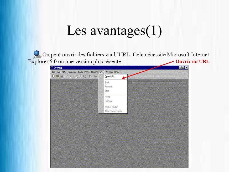 Les avantages(1) On peut ouvrir des fichiers via l 'URL. Cela nécessite Microsoft Internet Explorer 5.0 ou une version plus récente.