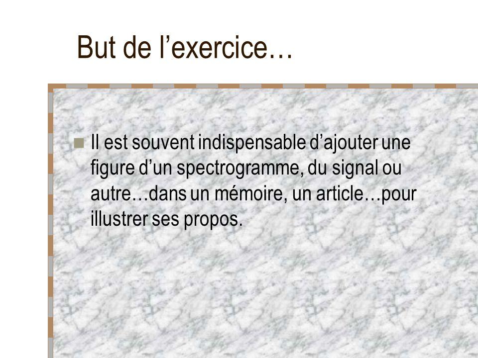But de l'exercice…