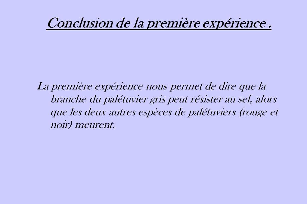 Conclusion de la première expérience .