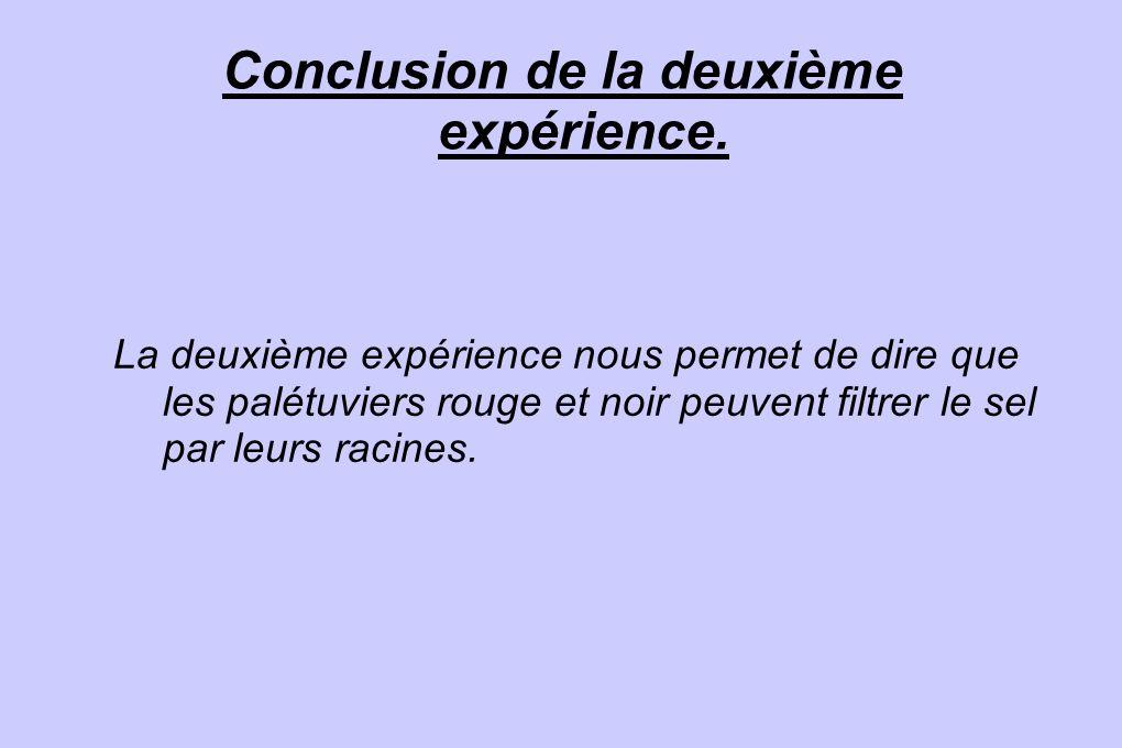 Conclusion de la deuxième expérience.