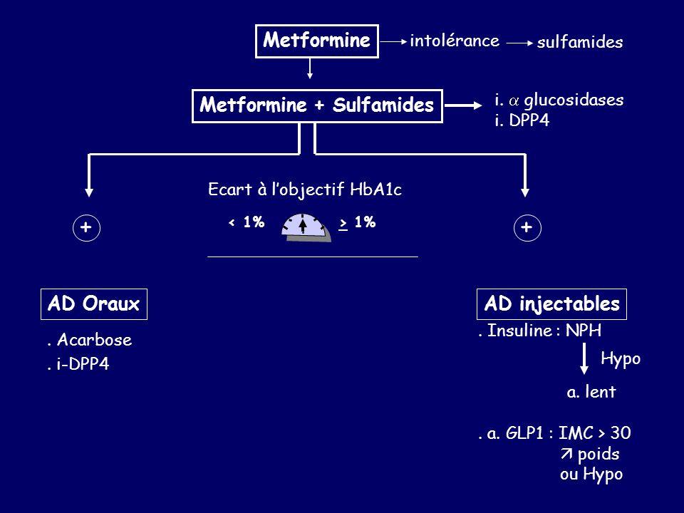 Metformine + Sulfamides