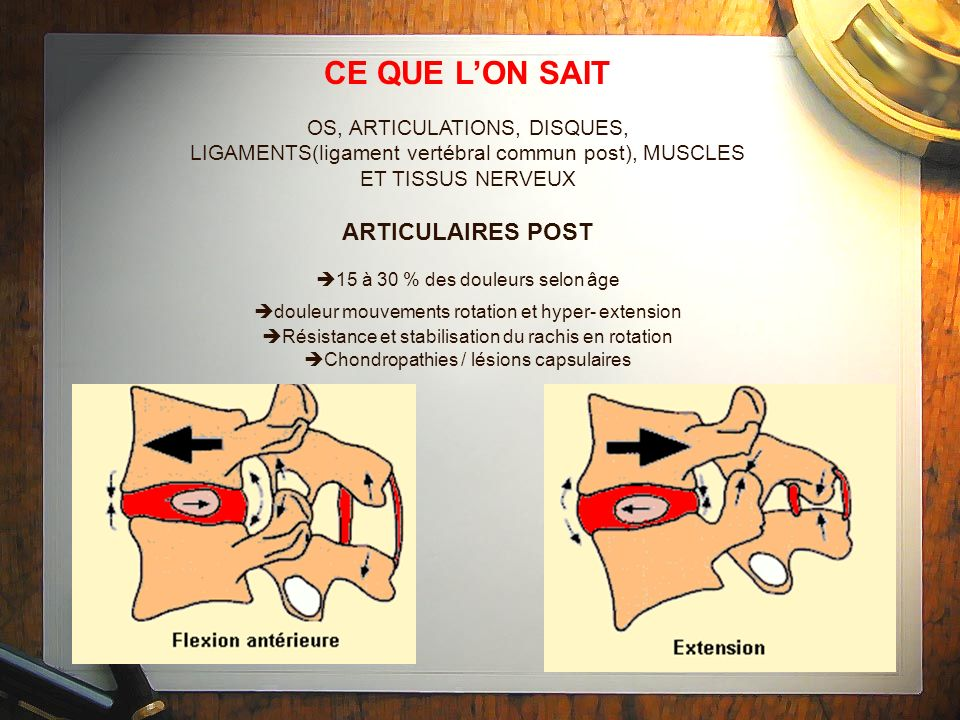CE QUE L'ON SAIT ARTICULAIRES POST OS, ARTICULATIONS, DISQUES,