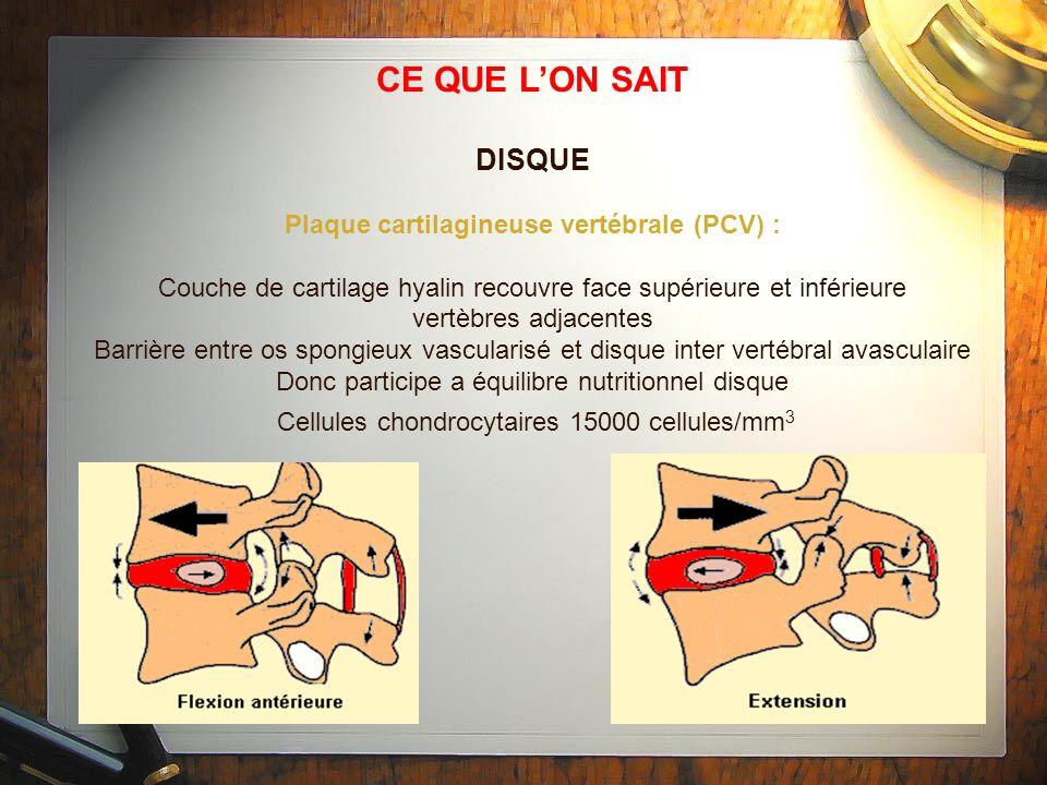 CE QUE L'ON SAIT DISQUE Plaque cartilagineuse vertébrale (PCV) :