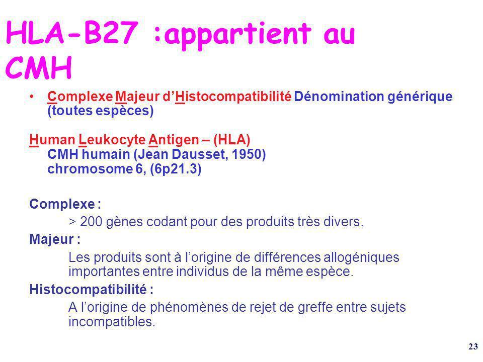 HLA-B27 :appartient au CMH