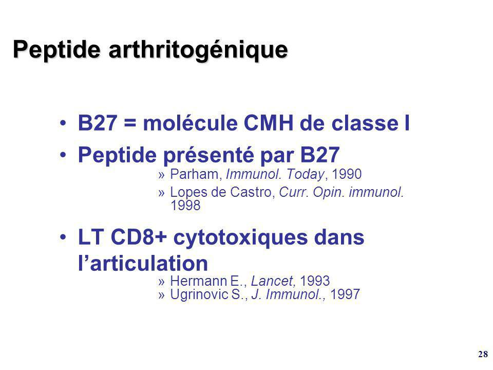 Peptide arthritogénique