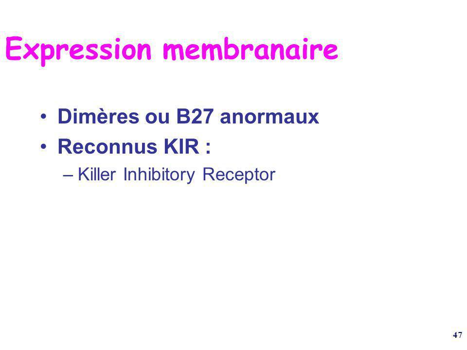 Expression membranaire