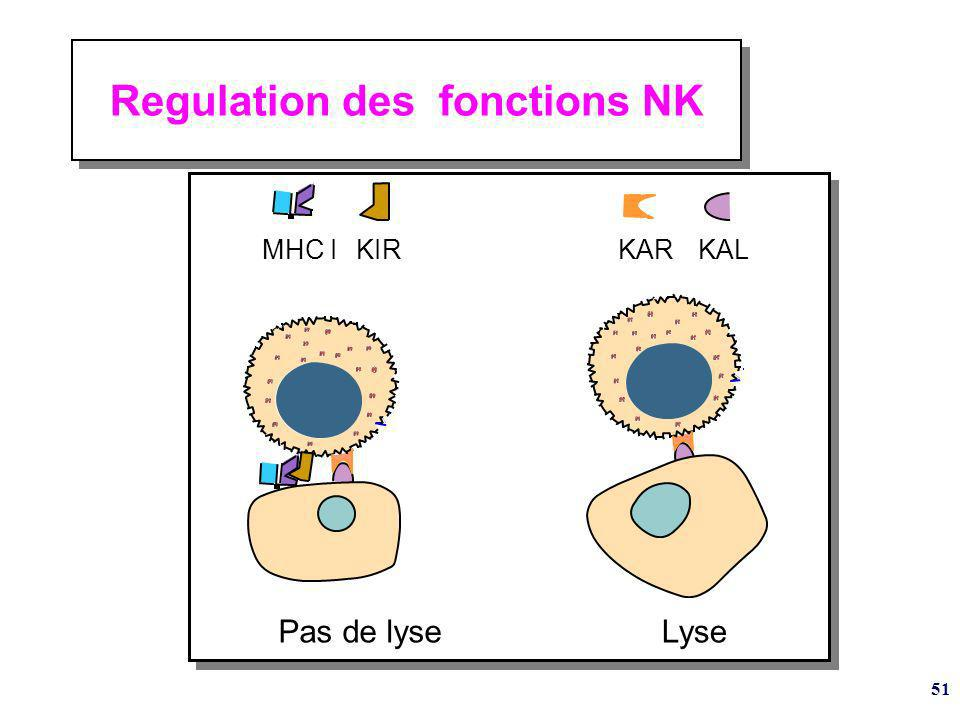 Regulation des fonctions NK
