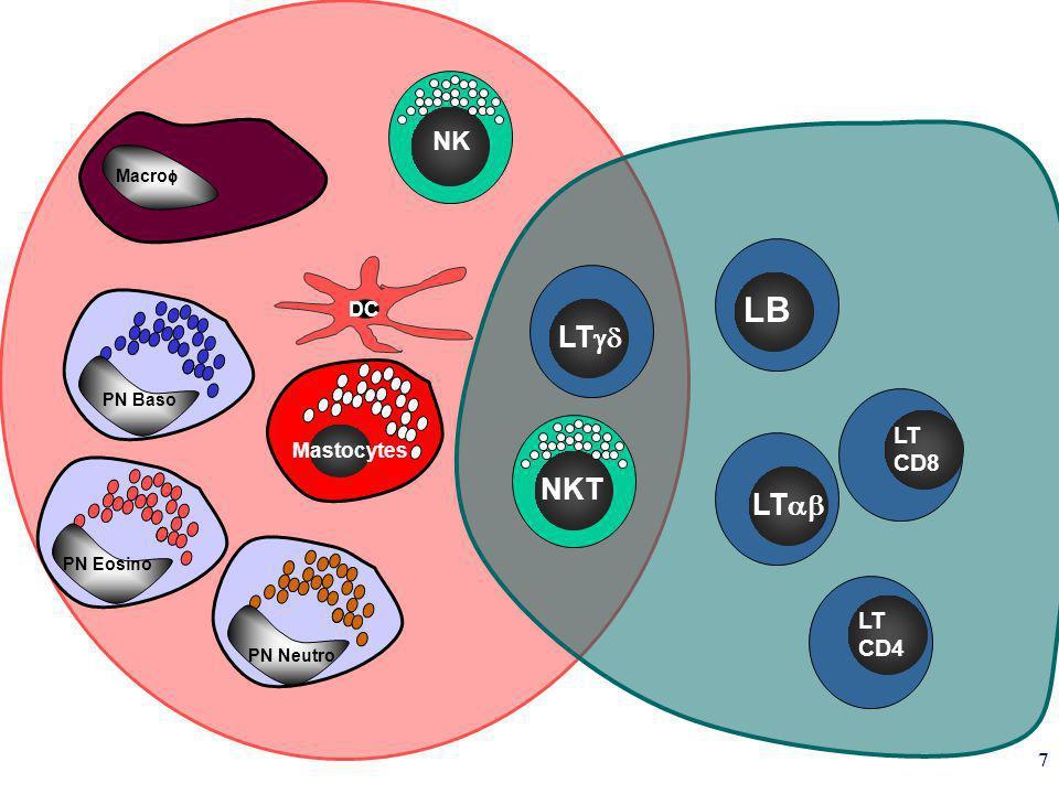 LB LTgd NKT LTab NK LT CD8 LT CD4 DC Mastocytes Macrof PN Baso