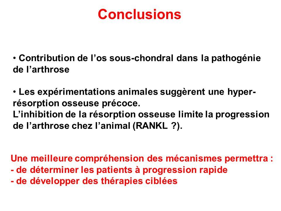 Conclusions Contribution de l'os sous-chondral dans la pathogénie de l'arthrose.