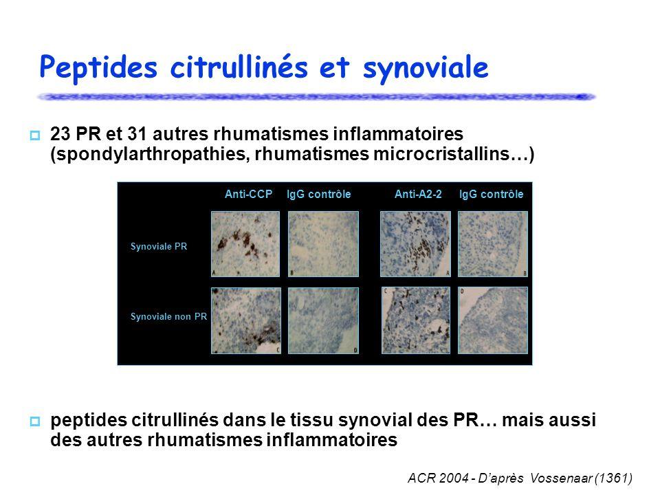 Peptides citrullinés et synoviale