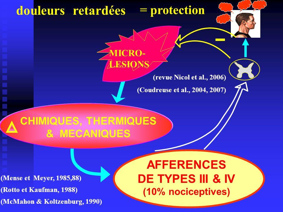 douleurs retardées = protection INFLAMMATION AFFERENCES
