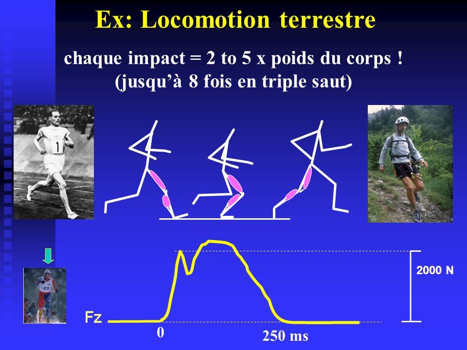 Ex: Locomotion terrestre