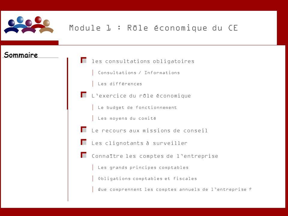 Module 1 : Rôle économique du CE