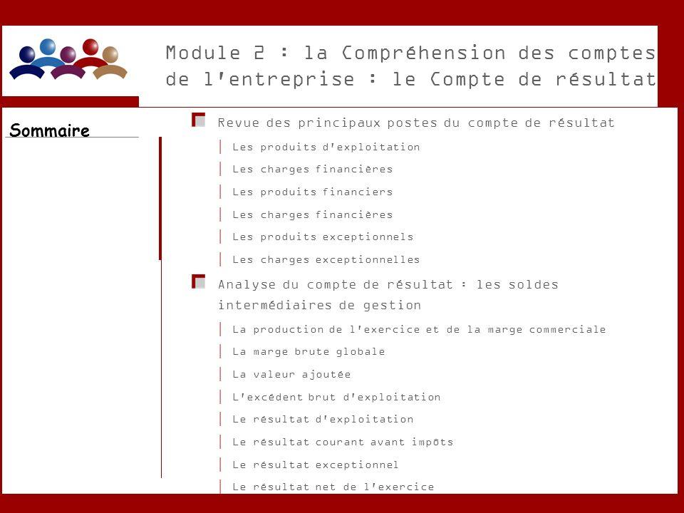 Module 2 : la Compréhension des comptes de l entreprise : le Compte de résultat