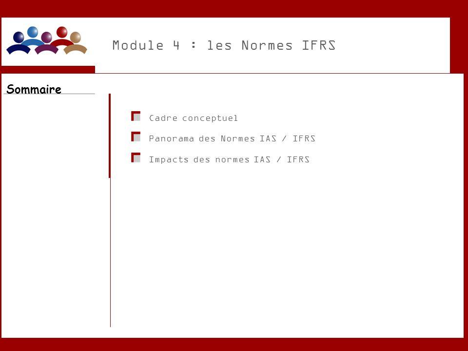 Module 4 : les Normes IFRS