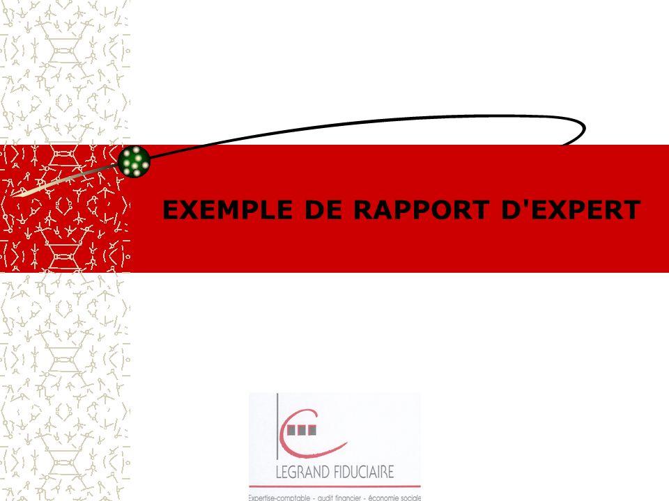 EXEMPLE DE RAPPORT D EXPERT