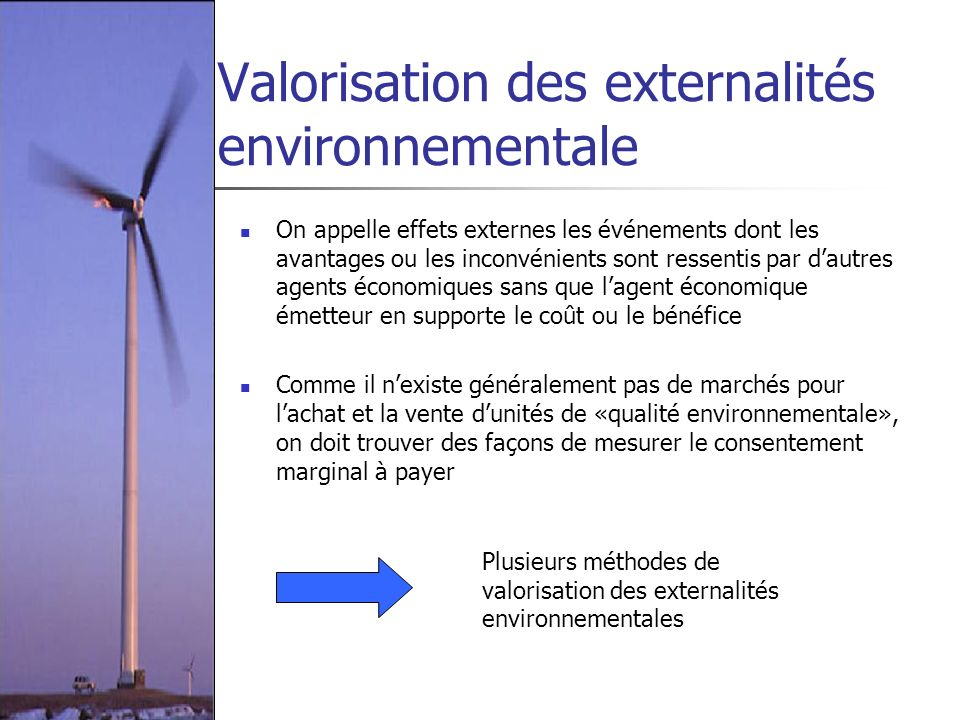 Valorisation des externalités environnementale