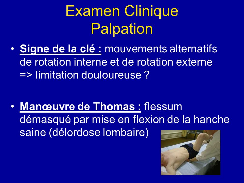 Examen Clinique Palpation