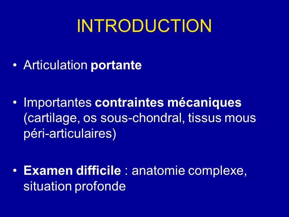 INTRODUCTION Articulation portante