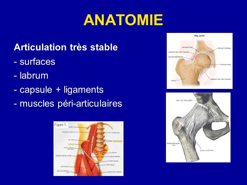 ANATOMIE Articulation très stable - surfaces - labrum
