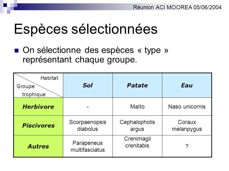 Espèces sélectionnées