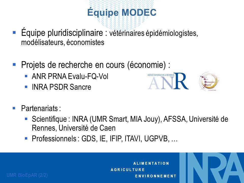 Projets de recherche en cours (économie) :