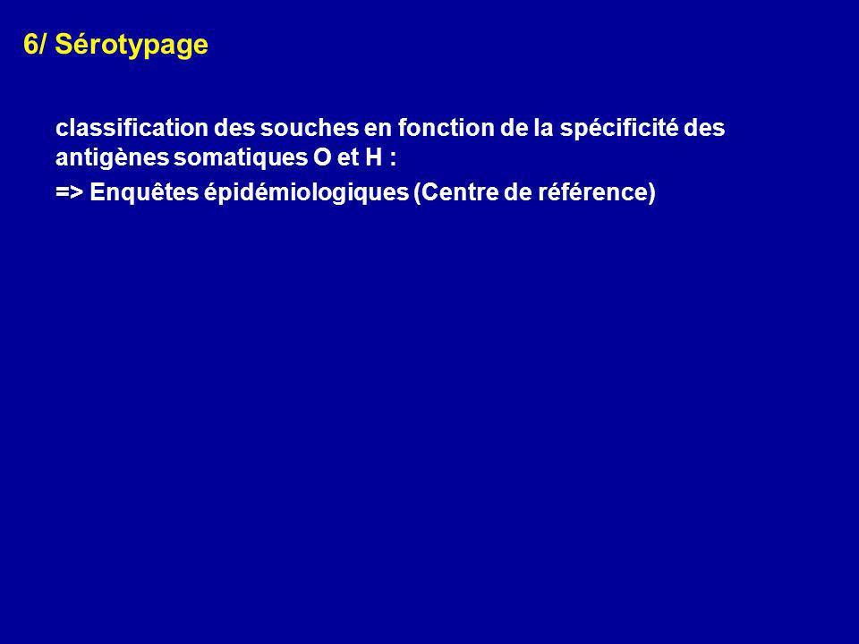 6/ Sérotypage classification des souches en fonction de la spécificité des antigènes somatiques O et H :