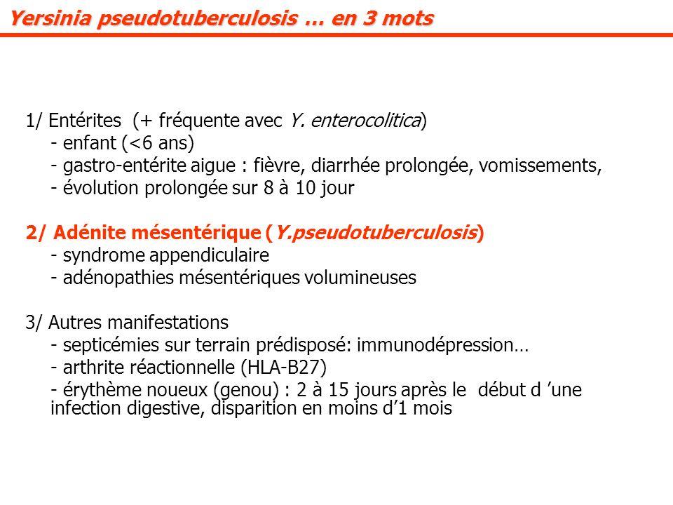 Yersinia pseudotuberculosis … en 3 mots