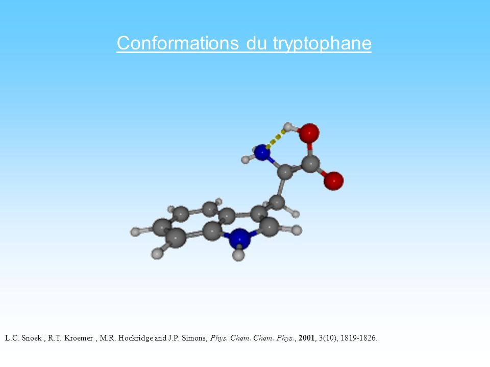 Conformations du tryptophane