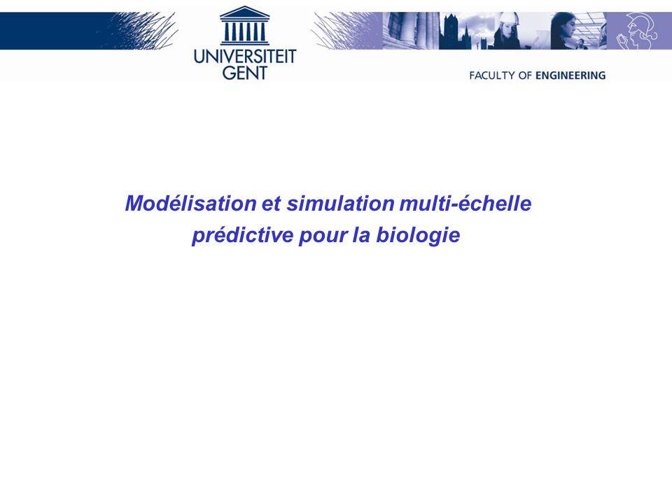 Modélisation et simulation multi-échelle