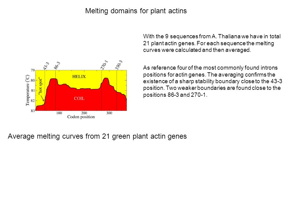 Melting domains for plant actins
