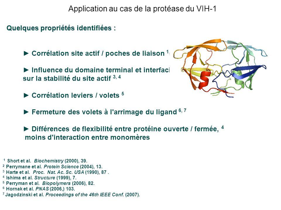 Application au cas de la protéase du VIH-1