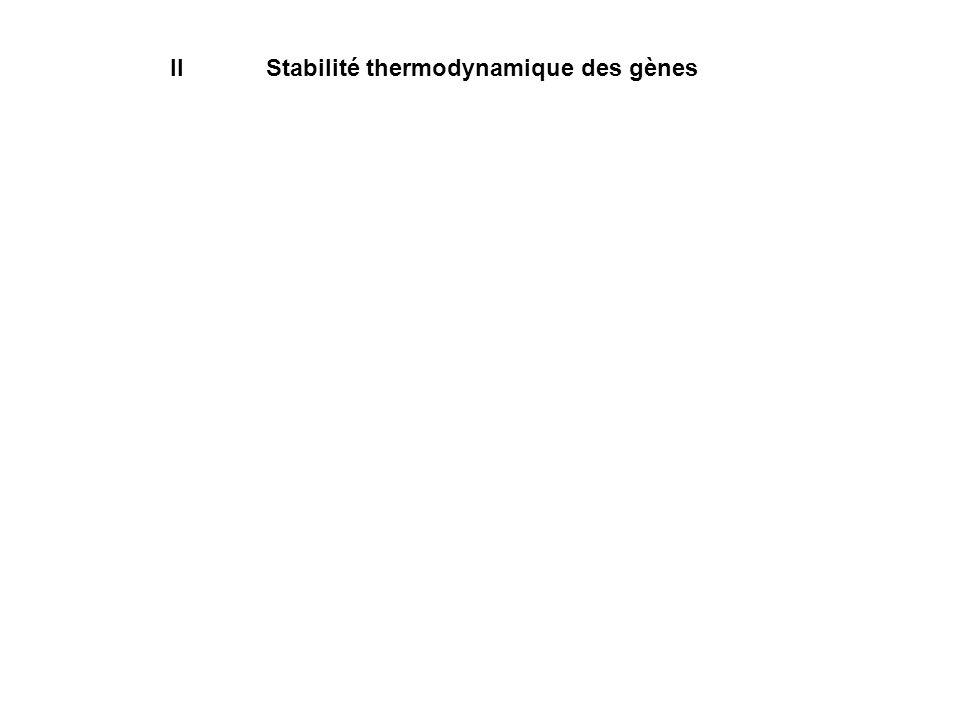 II Stabilité thermodynamique des gènes