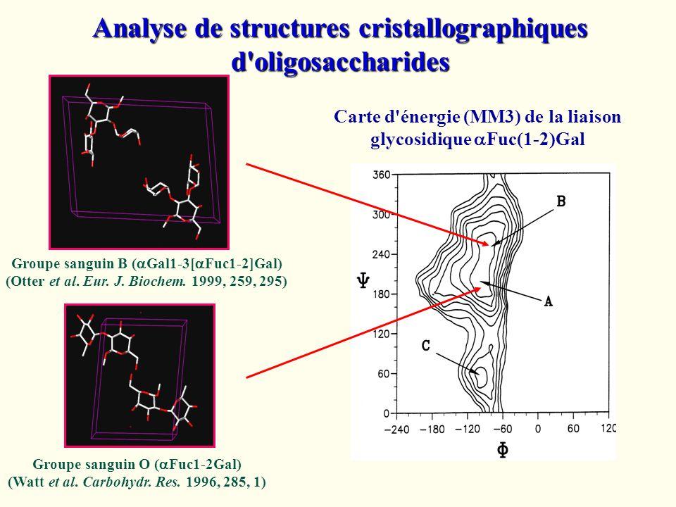 Analyse de structures cristallographiques d oligosaccharides