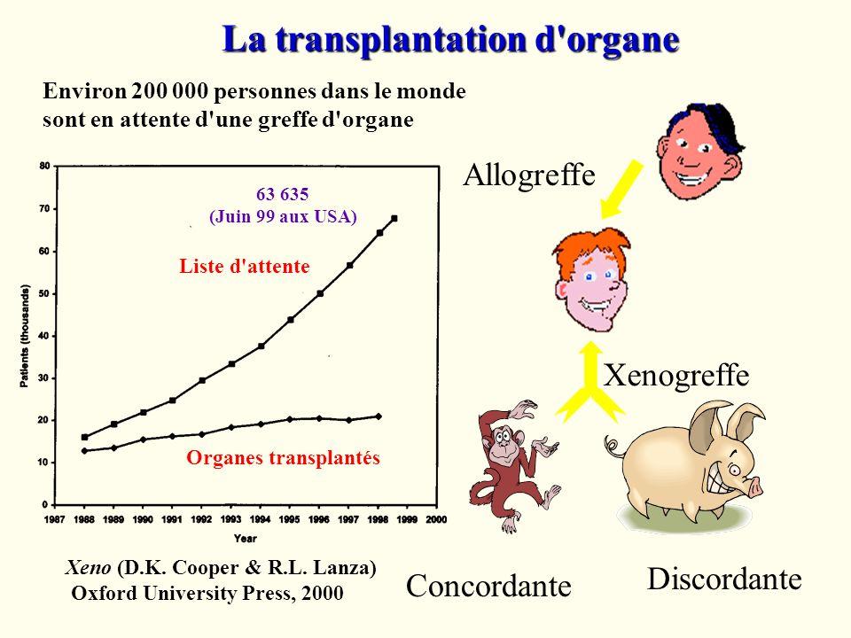 La transplantation d organe