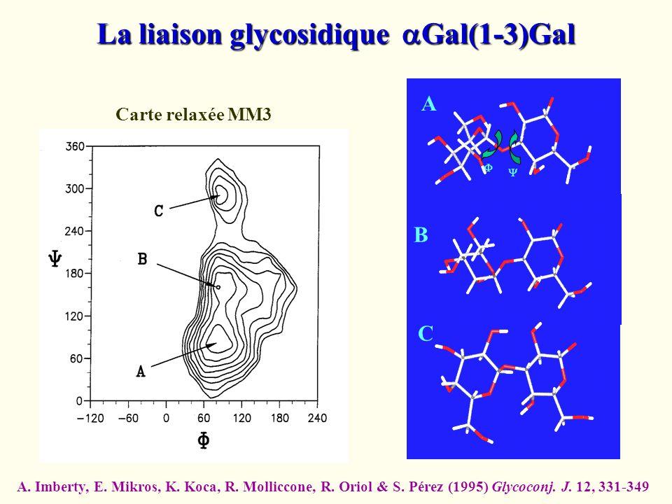 La liaison glycosidique aGal(1-3)Gal