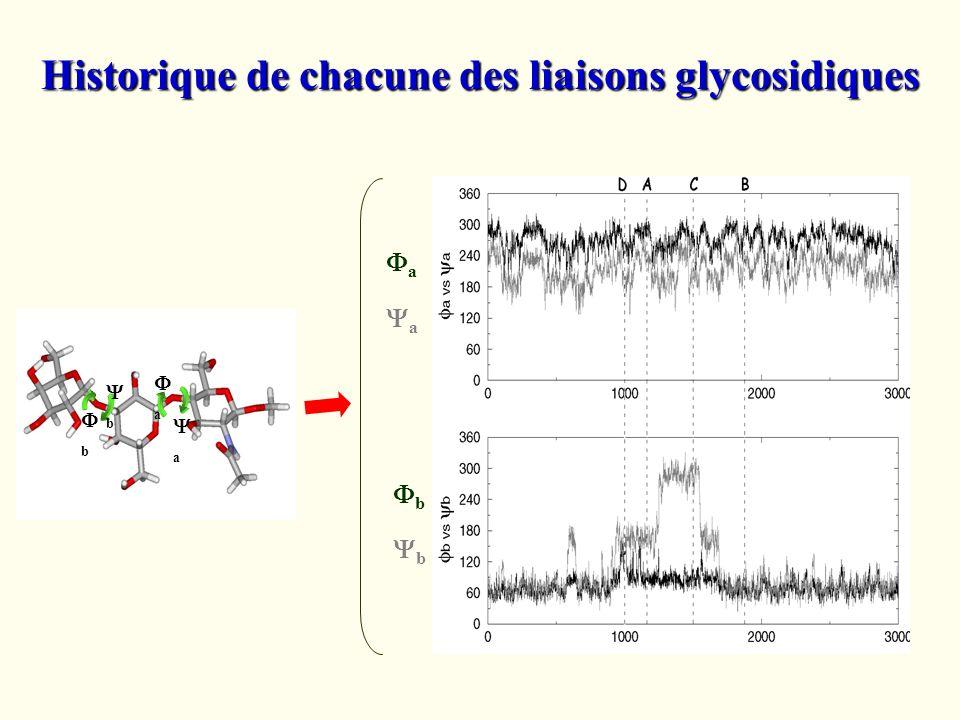 Historique de chacune des liaisons glycosidiques