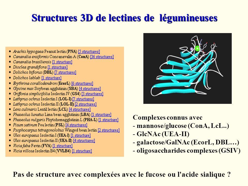 Structures 3D de lectines de légumineuses