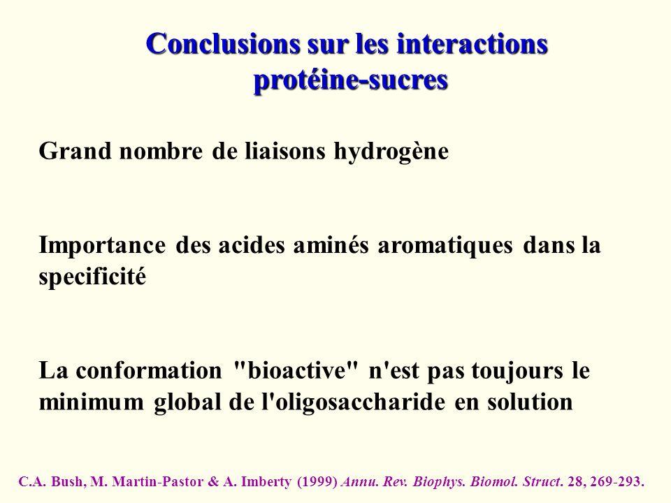 Conclusions sur les interactions