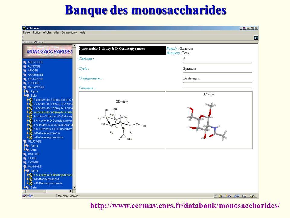 Banque des monosaccharides