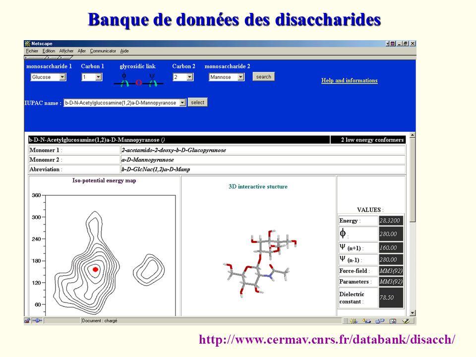 Banque de données des disaccharides