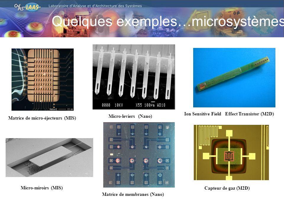 Quelques exemples…microsystèmes