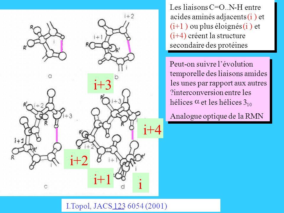 i+3 i+4 i+2 i+1 i Les liaisons C=O..N - H entre