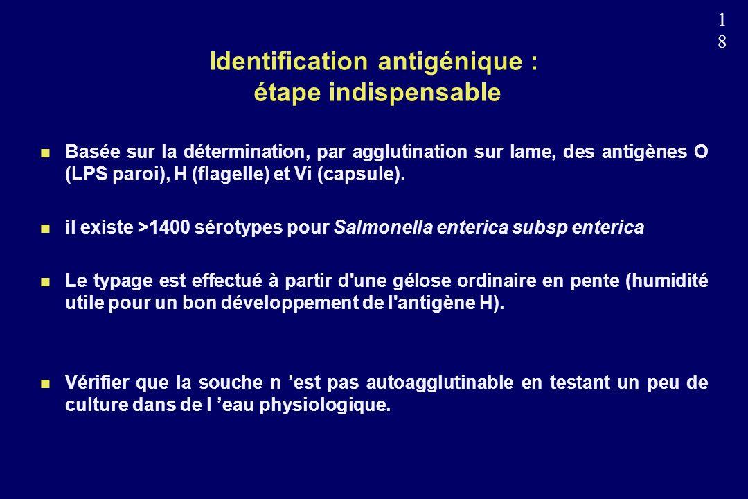 Identification antigénique : étape indispensable