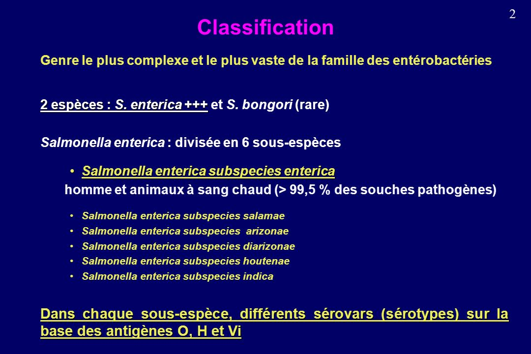 Classification Genre le plus complexe et le plus vaste de la famille des entérobactéries. 2 espèces : S. enterica +++ et S. bongori (rare)