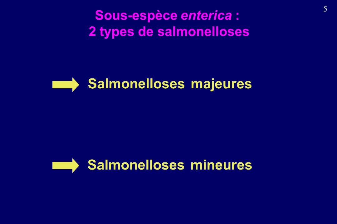Sous-espèce enterica : 2 types de salmonelloses