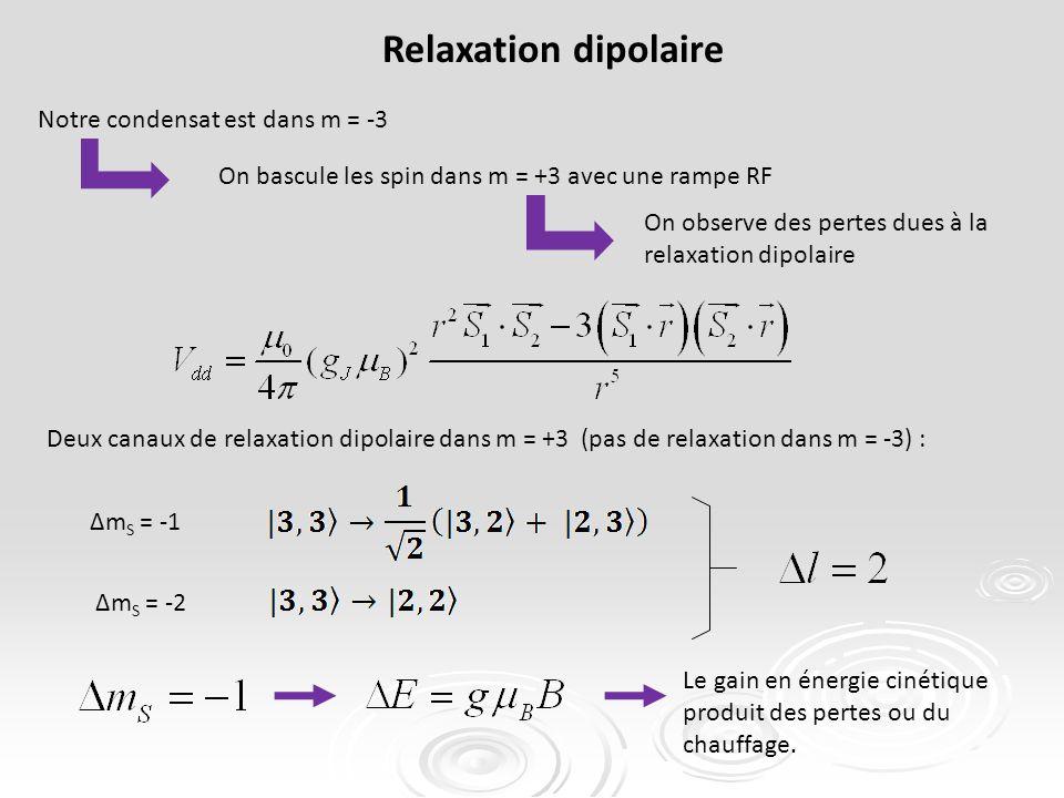 Relaxation dipolaire Notre condensat est dans m = -3