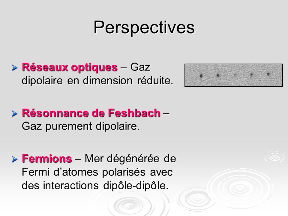 Perspectives Réseaux optiques – Gaz dipolaire en dimension réduite.