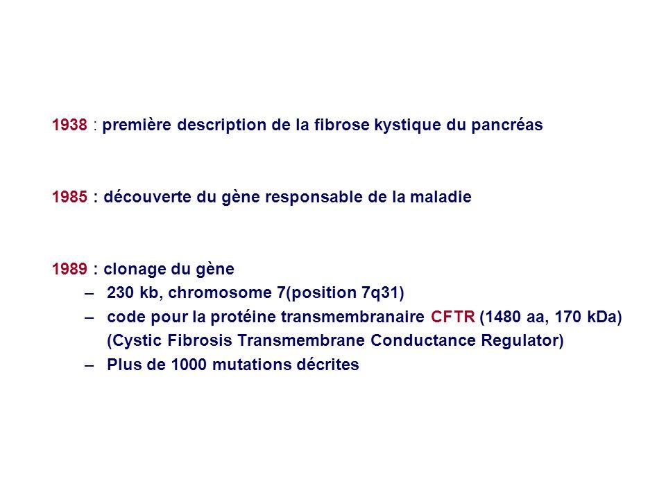1938 : première description de la fibrose kystique du pancréas